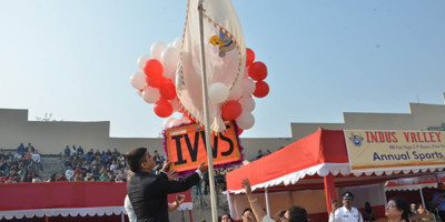 ivws-25-jwsm-31-1-19